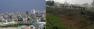 Lundi 19 novembre 2012 - Amir Hassan nous donne des nouvelles de Gaza