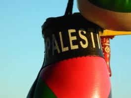 La Palestine jusqu'au rétroviseur