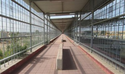 Terminal d'Erez (http://static.guim.co.uk/sys-images/Guardian/Pix/pictures/2011/2/9/1297260967762/The-Erez-crossing-between-007.jpg)